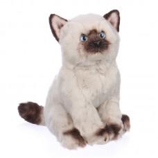 Elenor - plüss sziámi cica