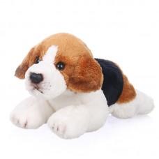 Nash - plüss beagle