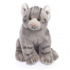 Forest -  szürke plüss cica