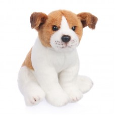 Jack - plüss Jack Russel-terrier