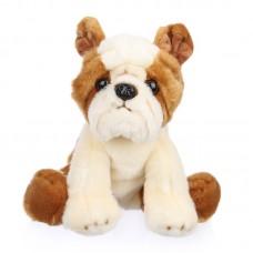 Bucó - plüss bulldog