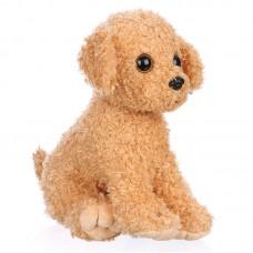 Lucky - plüss kutya