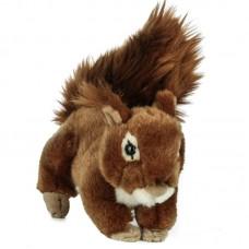Nuts - plüss mókus