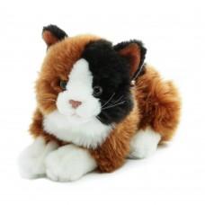 Akita - plüss cica
