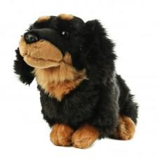 Drótszőrű tacskó - plüss kutya