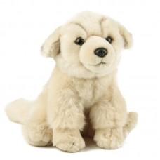 Labrador - plüss kutya