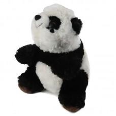Kast - plüss panda