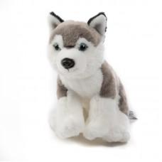Ben - plüss husky